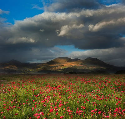 Landscape Of Poppy Fields In Front Of Mountain Range With Dramat Print by Matthew Gibson