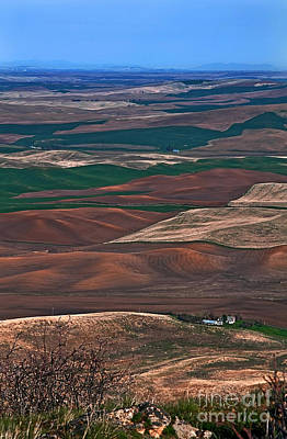 Photograph - Landscape Of Rolling Farmland Steptoe Butte Washington Art Prints by Valerie Garner