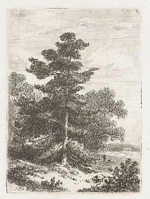 Fir Trees Drawing - Landscape With A Fir, Print Maker Johannes Pieter Van by Johannes Pieter Van Wisselingh