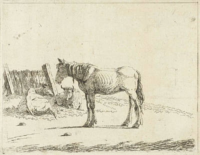 Fence Drawing - Landscape With A Horse And Two Cows At Fence by Artokoloro