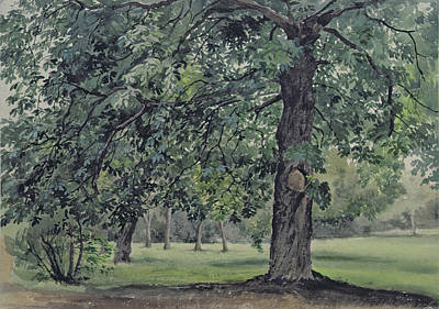 Collier Painting - Landscape With Chestnut Tree In The Foreground by Thomas Collier