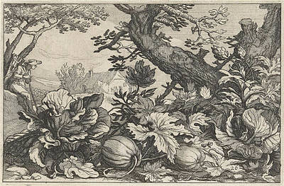 House Plant Drawing - Landscape With Pumpkins And Coal by Claes Jansz. Visscher (ii) And Abraham Bloemaert And Bo?tius Adamsz. Bolswert