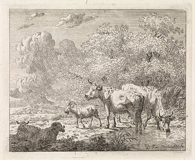 Dirk Drawing - Landscape With Sheep, Goats And Cows, Dirk Van Oosterhoudt by Dirk Van Oosterhoudt