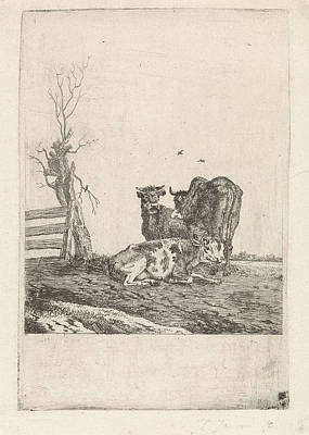 Landscape With Three Cows, Pieter Janson Art Print