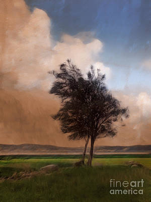 Painterly Photograph - Landscape With Trees by Lutz Baar