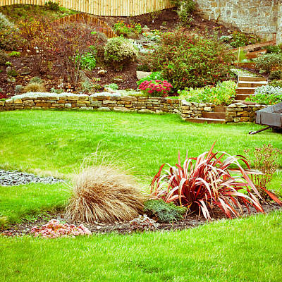 Royalty-Free and Rights-Managed Images - Landscaped garden by Tom Gowanlock