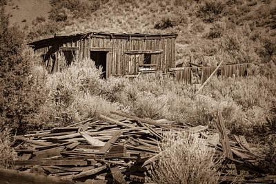 Photograph - Lane City Ghost Town by Susan Leonard
