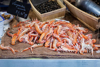 Photograph - Langoustines At The Market by Joshua McDonough