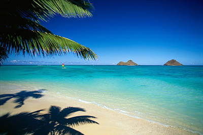 Photograph - Lanikai Beach Hobie Cat by Dana Edmunds - Printscapes