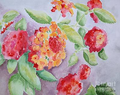 Painting - Lantana by Marilyn Zalatan