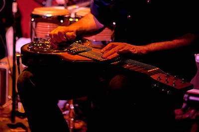 Photograph - Lap Steel by Leeon Pezok
