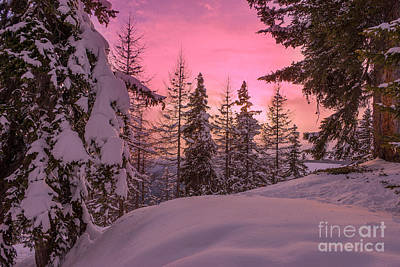 Photograph - Lapland Sunset by IPics Photography