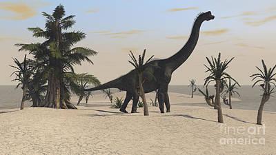 Brachiosaurus Digital Art - Large Brachiosaurus In A Tropical by Kostyantyn Ivanyshen