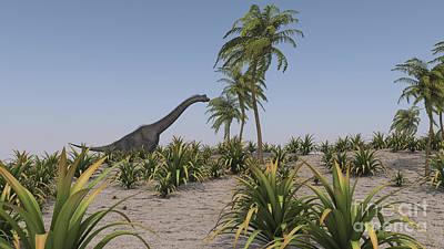Brachiosaurus Photograph - Large Brachiosaurus Roaming by Kostyantyn Ivanyshen