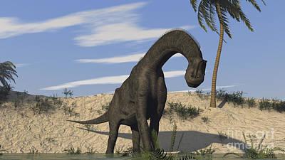Brachiosaurus Photograph - Large Brachiosaurus Standing In Water by Kostyantyn Ivanyshen