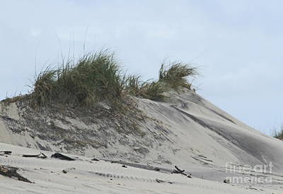 Wooden Photograph - Large Dunes by Cathy Lindsey