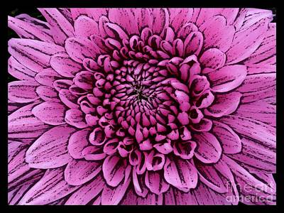 Photograph - Large Pink Dahlia 2 by Joan-Violet Stretch