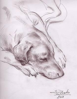 Lars Sleeping Art Print