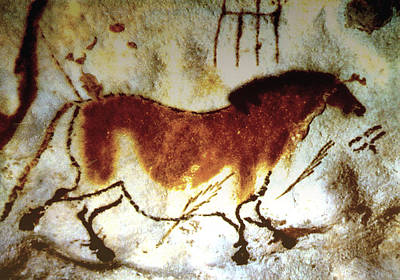 Lascaux Horse - Version 2 Art Print