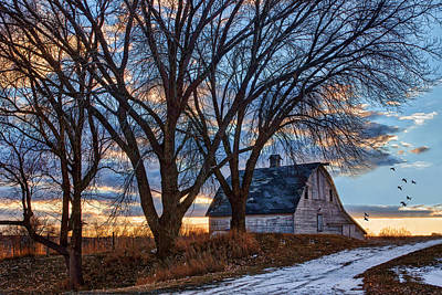Barn In Woods Photograph - Last Kiss Of Day by Nikolyn McDonald