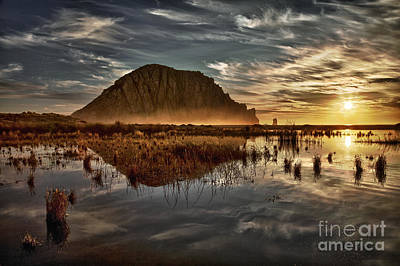 Photograph - Last Light by Alice Cahill
