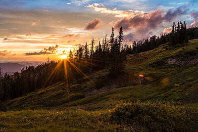 Sun Rays Photograph - Last Light At Cedar by Chad Dutson