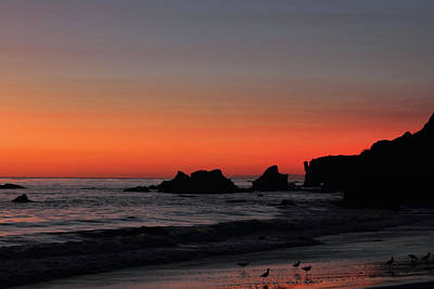 Photograph - Last Light At El Matador by Theo OConnor