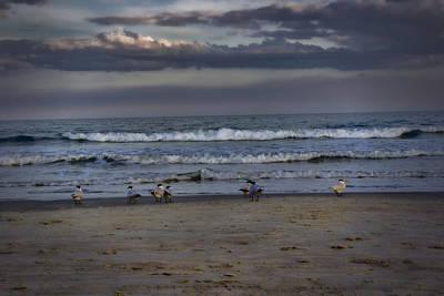 Photograph - Last Light by Ellen Heaverlo