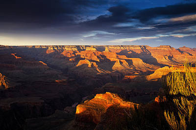 Last Light In The Grand Canyon Art Print by Andrew Soundarajan