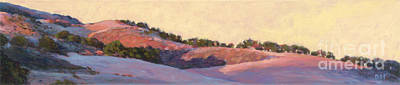 Painting - Last Light - Jalama Road by Betsee  Talavera