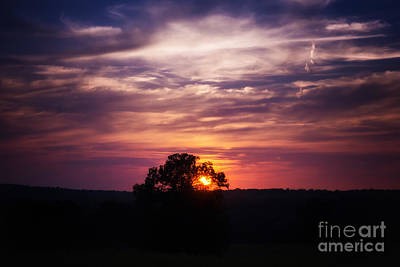 Photograph - Last Light by Julie Clements