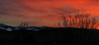 Art Print featuring the photograph Last Light by Nancy Marie Ricketts