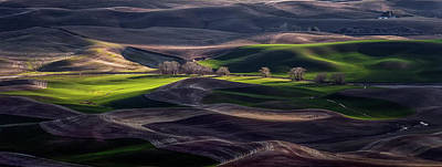 Dirt Photograph - Last Light Of The Day by David H Yang