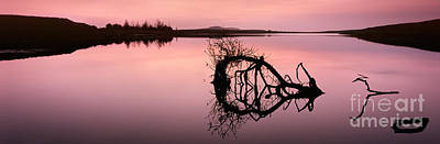 Lough Photograph - Last Light by Rod McLean
