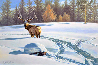 Elk Painting - Last Look  -elk by Paul Krapf