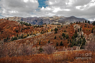 Mount Nebo Photograph - Last Of The Fall Colors In The Wasatch Range by Robert Bales