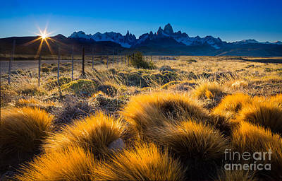 Photograph - Last Rays On Fitz Roy by Inge Johnsson