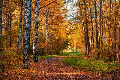 Last Song Of The Autumn Art Print