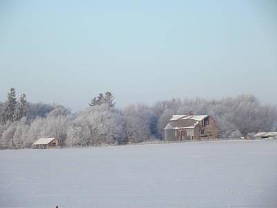 Photograph - Last Winter 2 by Bonfire Photography