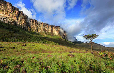 Photograph - Late Afternoon At Mount Roraima by Edson Vandeira