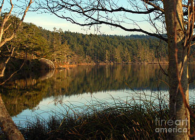Photograph - Late Afternoon Calm by Chuck Flewelling