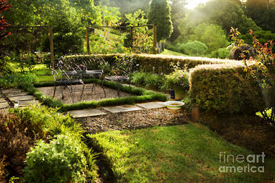 Late Afternoon Garden Art Print