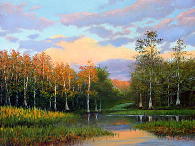 Painting - Late Afternoon In The Cypress Hammock by Tim Davis