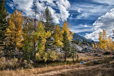 Mountain Royalty-Free and Rights-Managed Images - Late Afternoon in the Fall by Cat Connor