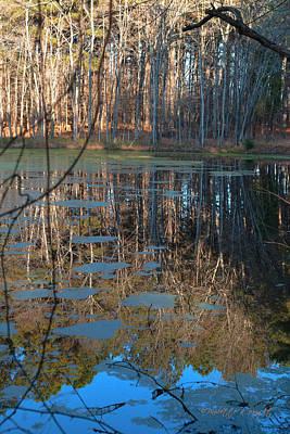 Photograph - Late Afternoon Reflections by Paulette B Wright