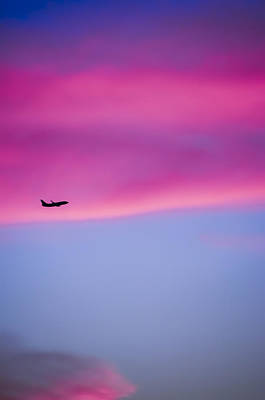 Photograph - Late Autumn Flight by Carolyn Marshall