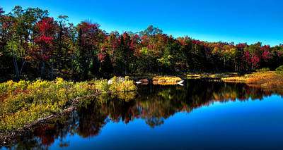 Fall Foliage Photograph - Late Autumn Morning In The Adirondacks by David Patterson