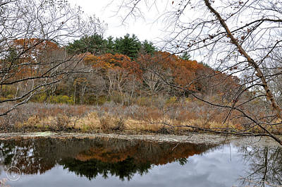 Photograph - Late Autumn On The Ipswich by Healing Woman