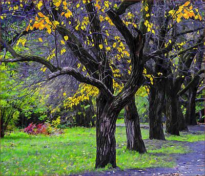 Photograph - Late Autumn by Vladimir Kholostykh