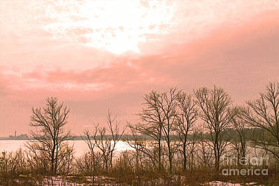 Photograph - Late Day Sun On Lake Ontario by Nina Silver